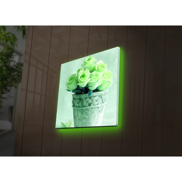 4040DACT-37 Multicolor Decorative Led Lighted Canvas Painting