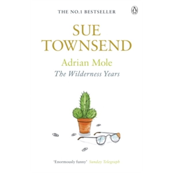 Adrian Mole: The Wilderness Years by Sue Townsend (Paperback, 2003)