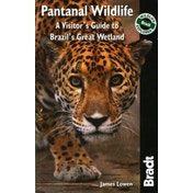 Pantanal Wildlife: A Visitor's Guide to Brazil's Great Wetland by James Lowen (Paperback, 2010)