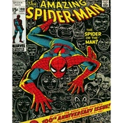 Marvel - Spider-Man Cover Mini Poster