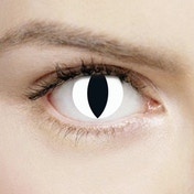 Snow Beast Wild White Cat 1 Day Halloween Coloured Contact Lenses (MesmerEyez XtremeEyez)