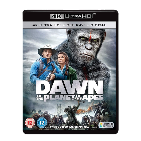 Dawn Of The Planet Of The Apes 4KUHD   Blu-ray