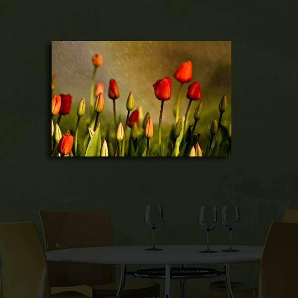 4570?ACT-28 Multicolor Decorative Led Lighted Canvas Painting