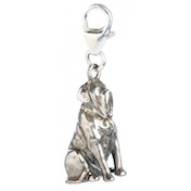 Sterling Silver Hagrids Dog Fang Clip on Charm