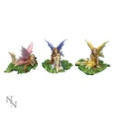 Fairies of Melody (Pack Of 3) Fairy Figures