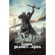 Dawn Of The Planet Of The Apes (horse) Maxi Poster