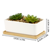 Ceramic Planter & Bamboo Base | M&W x2 Rectangular  - Image 3