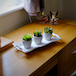 Set of 6 Artificial Fake Succulent Plants | M&W - Image 2