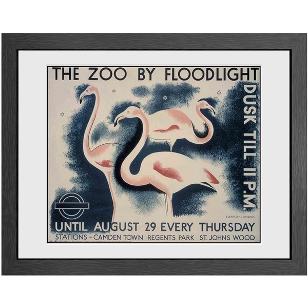 Transport For London The Zoo By Floodlight Print