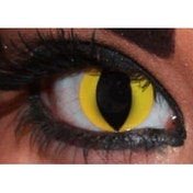 Wild Yellow Cat 1 Month Halloween Coloured Contact Lenses (MesmerEyez XtremeEyez)