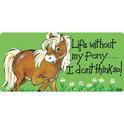 Life Without My Pony