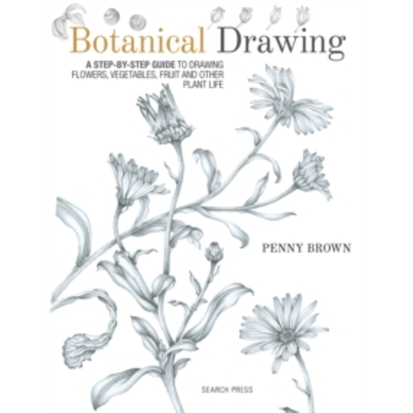 Botanical Drawing : A Step-by-Step Guide to Drawing Flowers, Vegetables, Fruit and Other Plant Life
