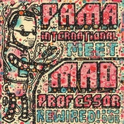 Pama International & Mad Professor - Rewired In Dub Vinyl