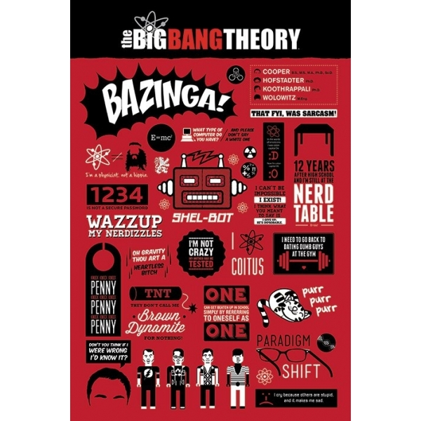 The Big Bang Theory Infographic Maxi Poster