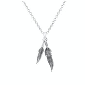 Pretty Double Feather Necklace