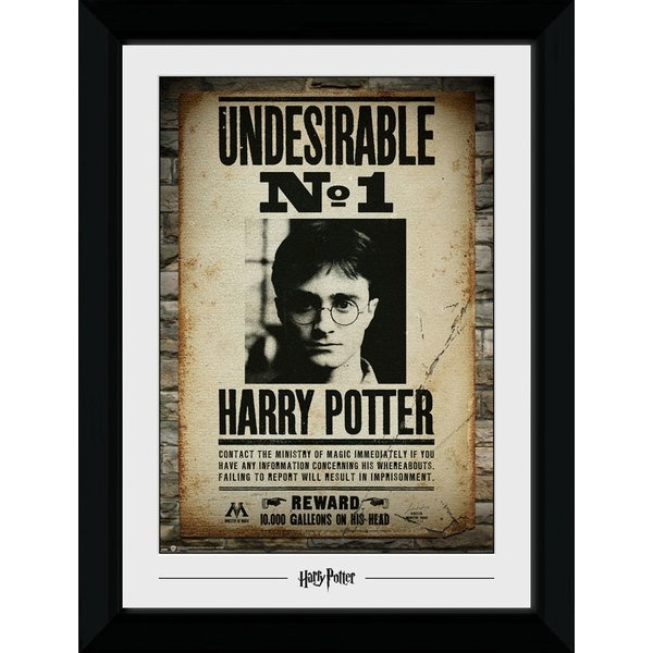 Harry Potter Undesirable No. 1 Collector Print