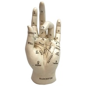 Palmistry Fortune Telling Hand Figure