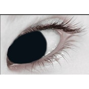 Mini Sclera Black 3 Month Coloured Contact Lenses (MesmerEyez)