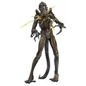 Battle Damaged Alien Warrior Brown (Aliens Series 12) Action Figure