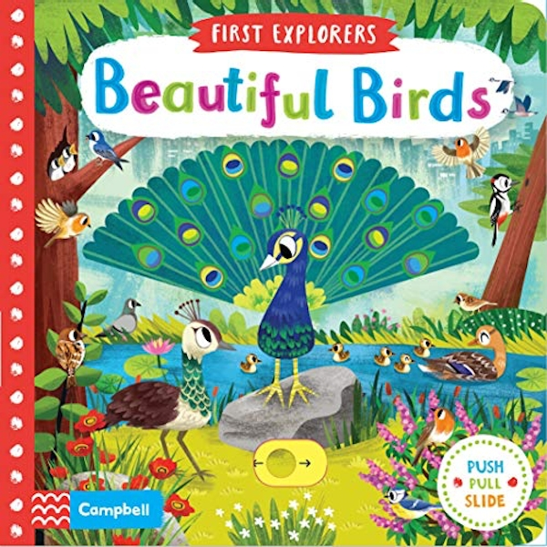 Beautiful Birds  Board book 2019