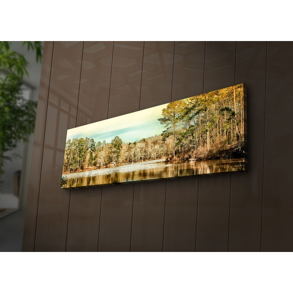 3090?ACT-63 Multicolor Decorative Led Lighted Canvas Painting