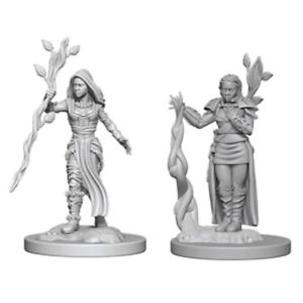 Dungeons & Dragons Nolzur's Marvelous Unpainted Miniatures Human Female Druid