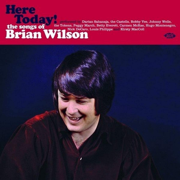 Various Artists - Here Today! The Songs Of Brian Wilson Vinyl