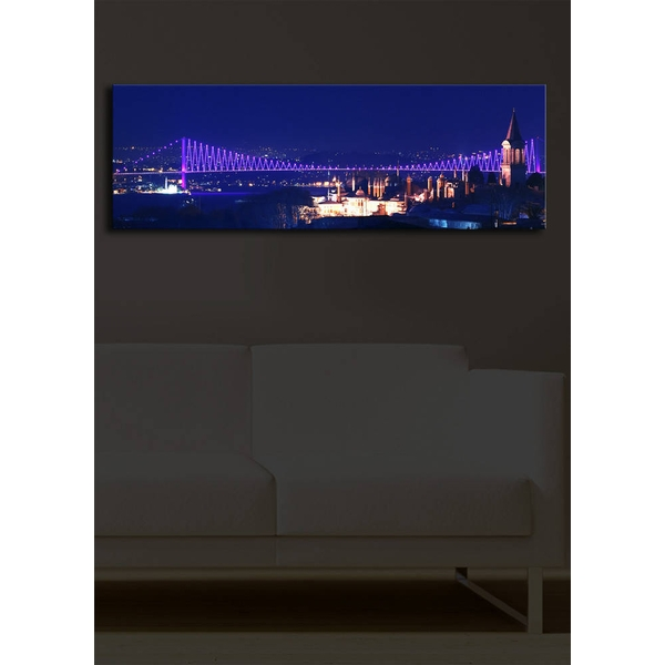 3090?ACT-14 Multicolor Decorative Led Lighted Canvas Painting