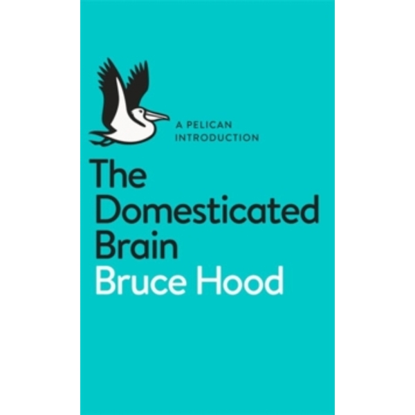 The Domesticated Brain: A Pelican Introduction by Bruce Hood (Paperback, 2014)