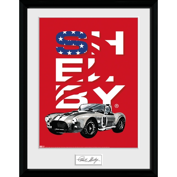 Shelby - Stars Collector Print