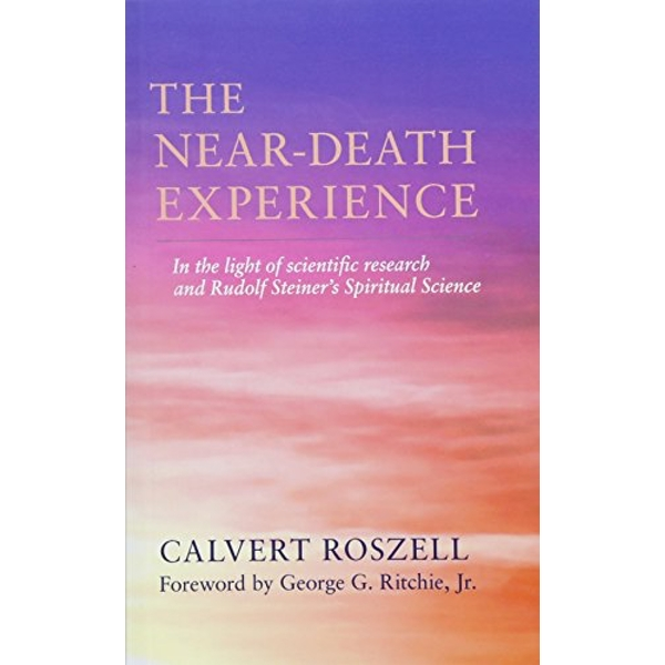 The Near-Death Experience  Paperback / softback 2019