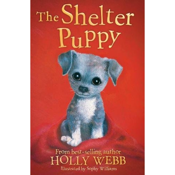The Shelter Puppy  Paperback / softback 2018