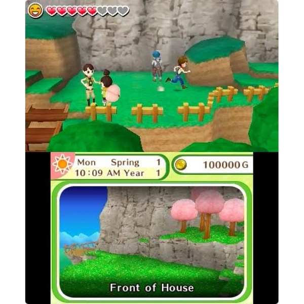 Harvest Moon Skytree Village 3DS Game - Image 5