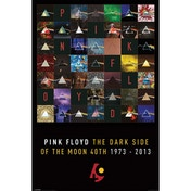 Pink Floyd- Dark Side Of The Moon 40th Anniversary Maxi Poster