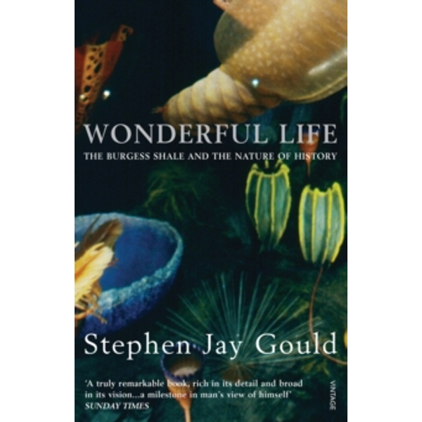 Wonderful Life by Stephen Jay Gould (Paperback, 2000)
