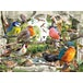 Ravensburger Our Feathered Friends Birds 1000 Piece Jigsaw Puzzle - Image 3