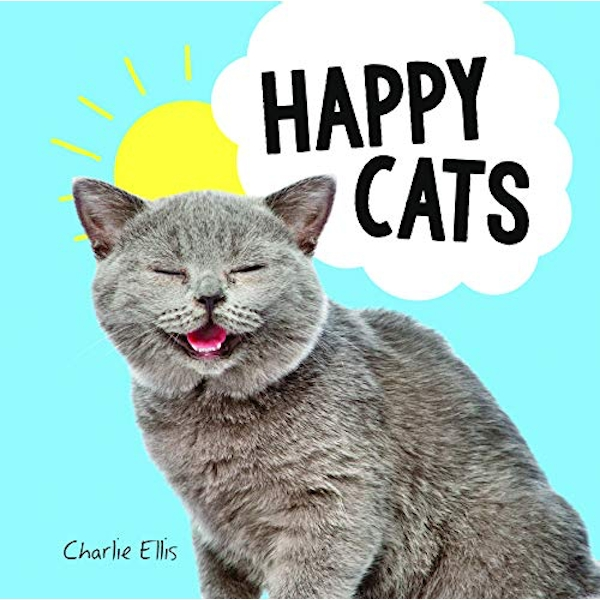 Happy Cats Photos of Felines Feeling Fab Hardback 2018