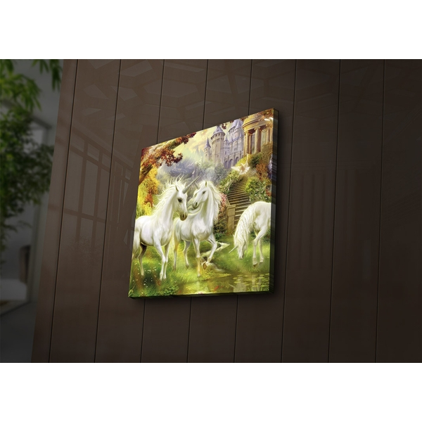 4040?ACT-43 Multicolor Decorative Led Lighted Canvas Painting