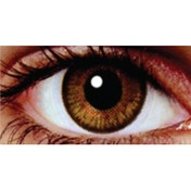 Golden Brown 1 Month Natural Coloured Contact Lenses (MesmerEyez Blendz)