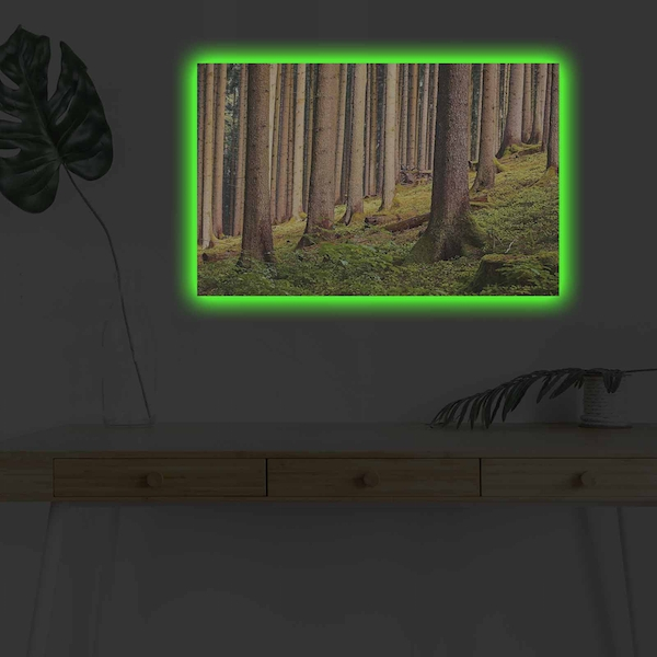 4570DHDACT-010 Multicolor Decorative Led Lighted Canvas Painting