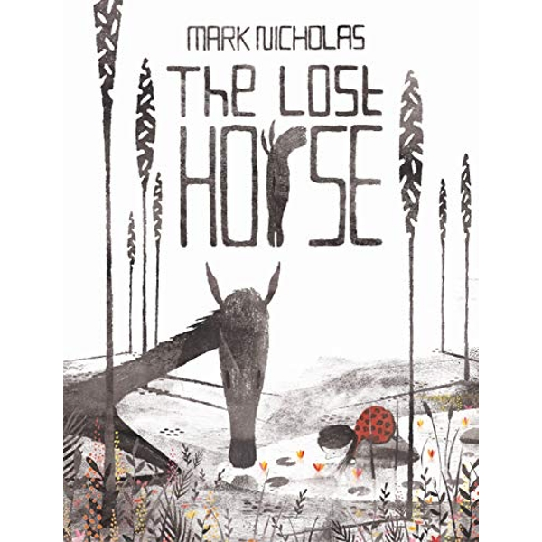 The Lost Horse  Hardback 2018