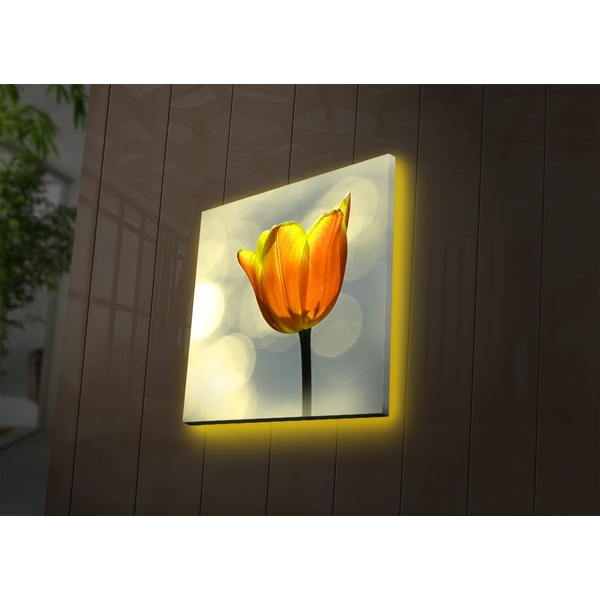 2828DACT-55 Multicolor Decorative Led Lighted Canvas Painting