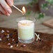 Lemon Zest (Pastel Collection) Votive Candle - Image 2