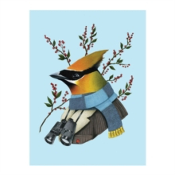 Berkley Bestiary Winter Waxwing Large Embellished Holiday Notecards