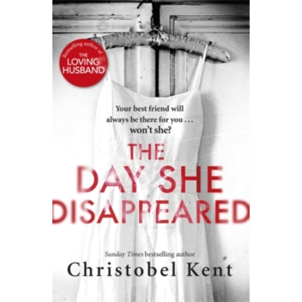 The Day She Disappeared : From the bestselling author of The Loving Husband