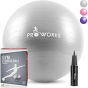 Anti-Burst Exercise Ball 65cm Heavy Duty With Pump - Silver