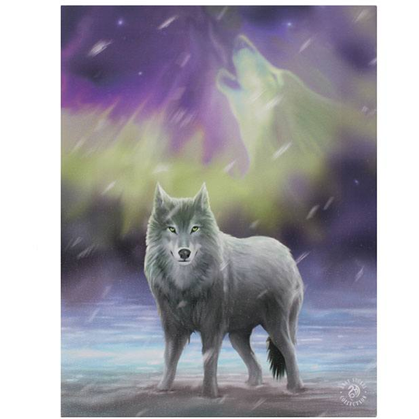 Small Aurora Canvas Picture by Anne Stokes