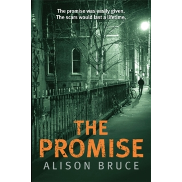 The Promise by Alison Bruce (Hardback, 2015)