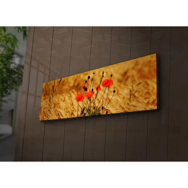 3090?ACT-71 Multicolor Decorative Led Lighted Canvas Painting