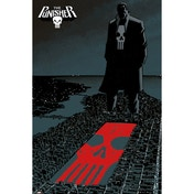 Marvel Extreme The Punisher Maxi Poster
